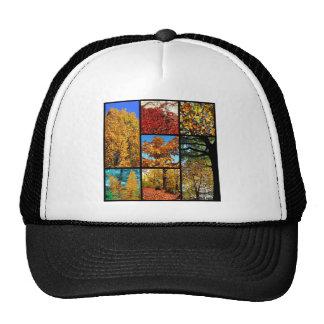 Multiple photos of autumn foliage trucker hat