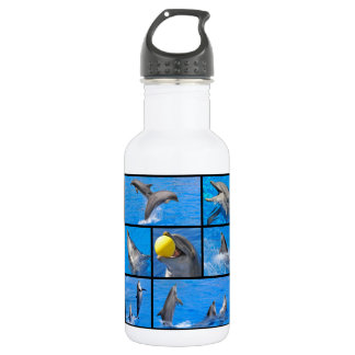 Multiple photos of dolphins stainless steel water bottle