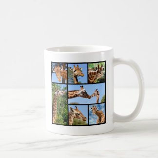 Multiple photos of giraffes coffee mugs