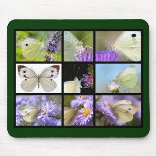 Multiple photos of Large White butterfly Mouse Pad