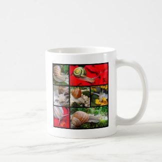 Multiple photos of snails mug