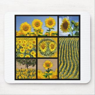 Multiple photos of Sunflowers Mousepad