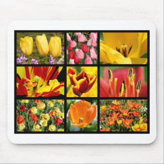Multiple photos of tulip flowers mouse pad