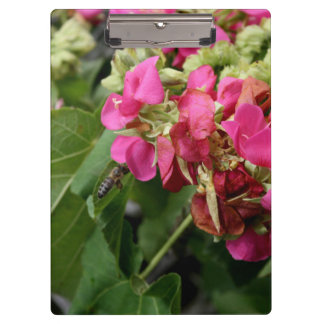 multiple pink flowers with bee neat insect flower clipboards