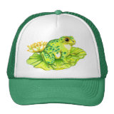 (multiple products selected)Frog hat