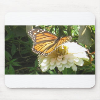 (multiple products selectedMonarch Mouse Pad