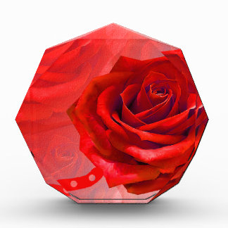 Multiple products with a beautiful red rose awards