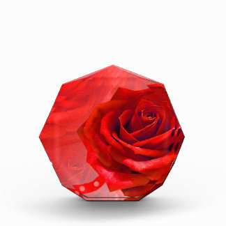 Multiple products with a beautiful red rose acrylic award