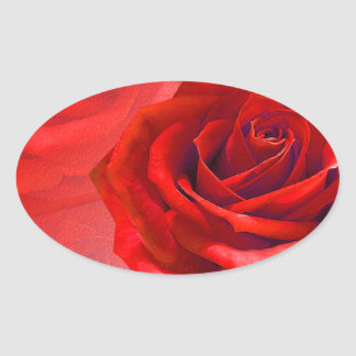 Multiple products with a beautiful red rose oval sticker