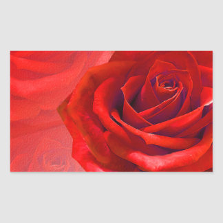 Multiple products with a beautiful red rose rectangular sticker