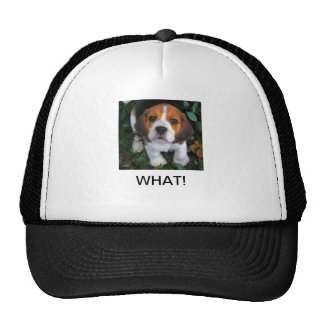 MULTIPLE PRODUCTS WITH AN ACCENT OF CUTE TRUCKER HAT