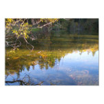 """Multiple Reflections 5"""" X 7"""" Invitation Card"""