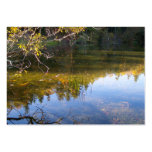 Multiple Reflections Large Business Cards (Pack Of 100)