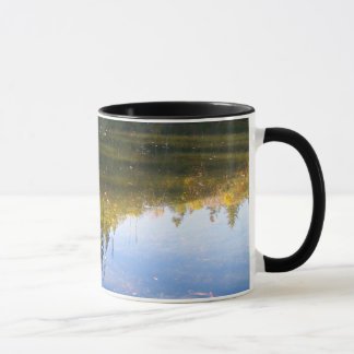 Multiple Reflections Mug