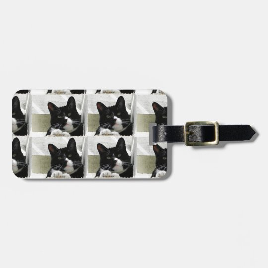 Multiple Tuxedo Cat Pattern Luggage Tag