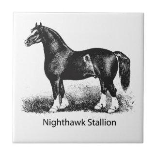 Múltiplo seleccionado StallionProduct del Nighthaw Azulejos