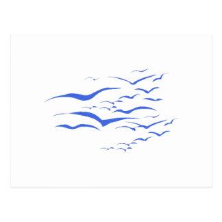 Multitud azul de pájaros tarjeta postal