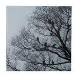 Multitud de buitres en un árbol del invierno teja  ceramica