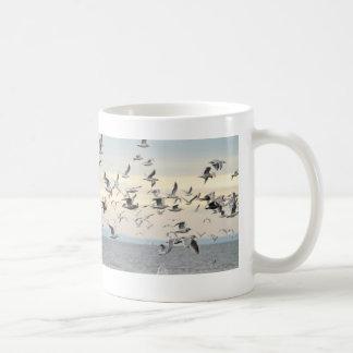 Multitud de la foto de las gaviotas taza de café
