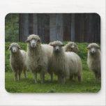 Multitud de las ovejas - Mousepad Alfombrilla De Ratón