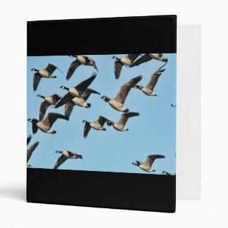 Multitud de los gansos de Canadá en vuelo