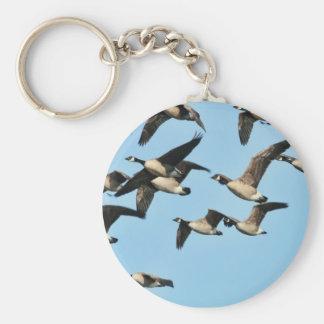 Multitud de los gansos de Canadá en vuelo Llavero Redondo Tipo Pin