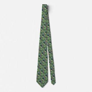 Multitud de los lorikeets del arco iris en una corbatas personalizadas