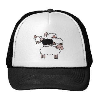 multitud de ovejas con las ovejas negras gorra
