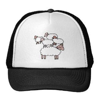 multitud de ovejas gorras de camionero