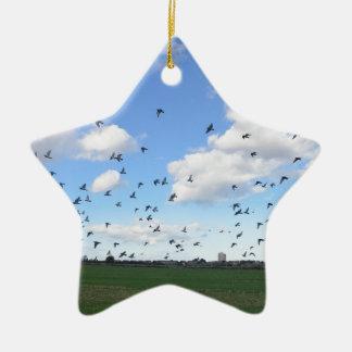 Multitud de palomas adorno de cerámica en forma de estrella