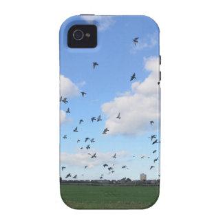 Multitud de palomas iPhone 4 carcasas
