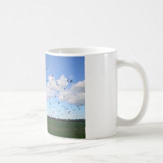 Multitud de palomas tazas de café