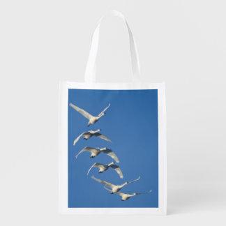 Multitud del cisne de tundra del vuelo contra un bolsa de la compra