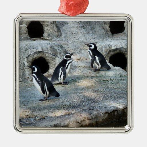 Multitud del pingüino ornamente de reyes