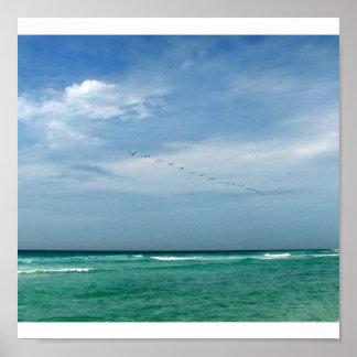Multitud en vuelo - Destin, la Florida Póster