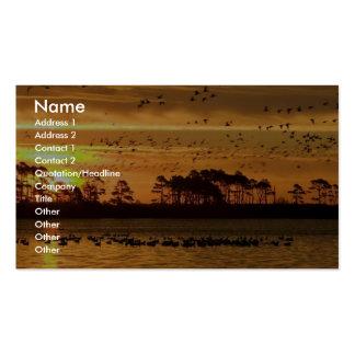 Multitud mezclada de la mosca de las aves acuática tarjetas de visita