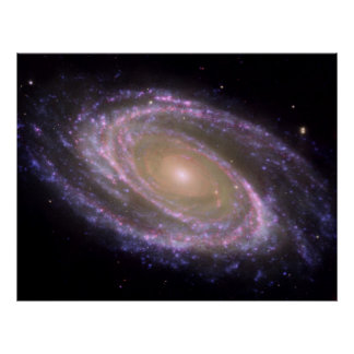 Multiwavelength M81 Poster