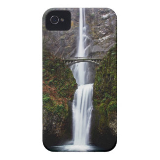 Multnomah Fall Case