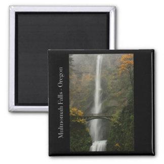 Multnomah Falls in Autumn Magnet
