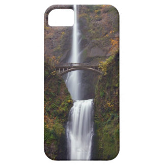 Multnomah Falls in late Autumn iPhone SE/5/5s Case