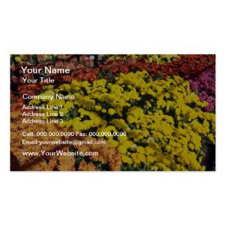 Mum show, Experimental Farm, Ottawa, Ontario, Cana Business Card Templates