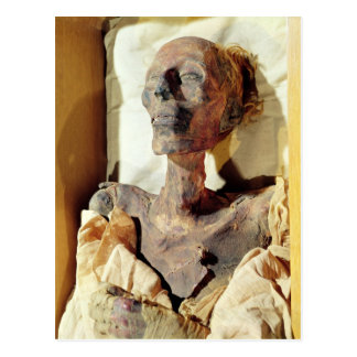 Mummified body of Ramesses II  found in a tomb Postcard