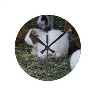 Mummy_And_Baby_Guinea_Pig Round Clock
