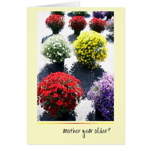 Mums the Word Birthday Greeting Card