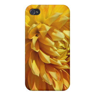Mums the Word Lush Golden Blossom iPhone 4 Cases