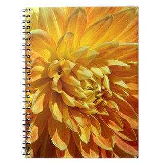Mums the Word Lush Golden Blossom Notebook