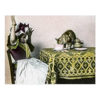Mún chica de fiesta del té del vintage del gatito tarjeta postal