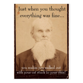 Mún día del pelo del viejo hombre postales