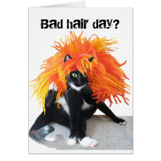 Mún día del pelo tarjeta de felicitación