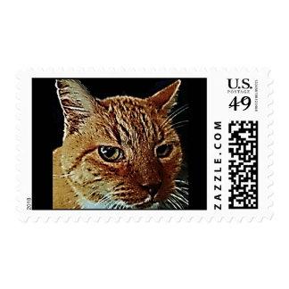Mún gatito timbres postales